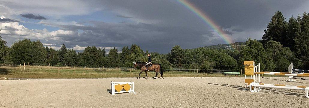 Pferdepension in Büchenbronn